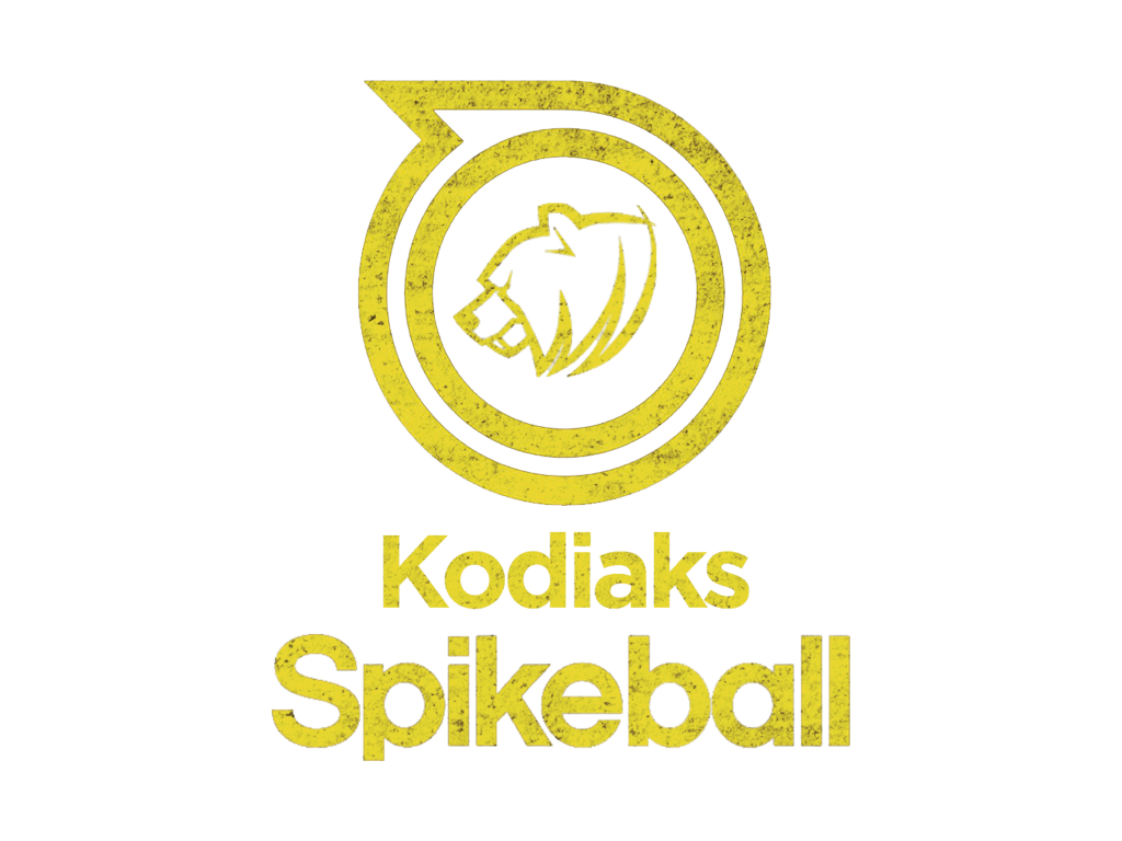 LC-Spikeball-Logo.png