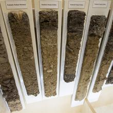 Lethbridge College's soil monolith collection holds a fascinating history.